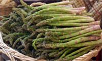 aphrodisiac power of asparagus