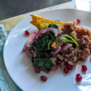 Roasted Winter Squash with grains and pomegranate