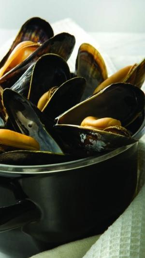 Steamed mussels in a small, black pot