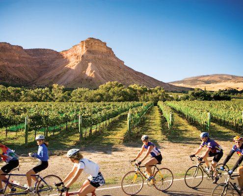 Colorado wine