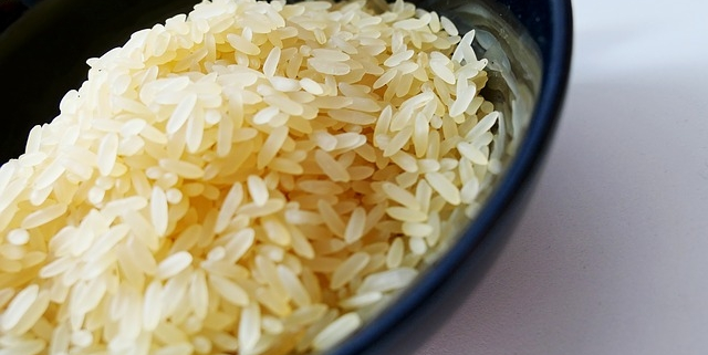 closeup of bowl of sushi rice