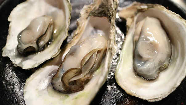 The dictionary of aphrodisiac foods