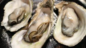 Are oysters an aphrodisiac for women