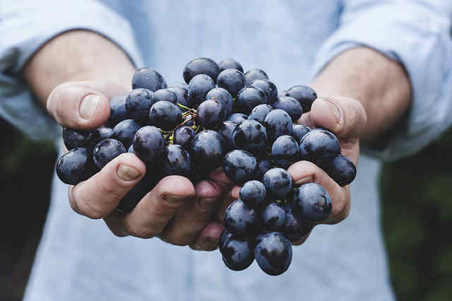 The aphrodisiac history of grapes
