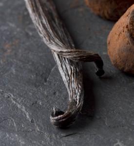 aroma of vanilla