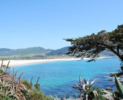 Carmel beach view
