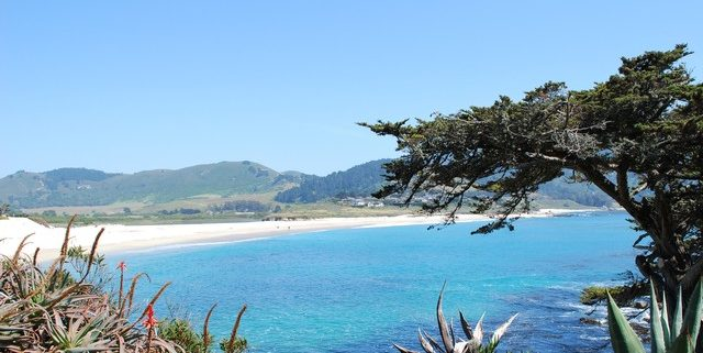 Carmel beach view