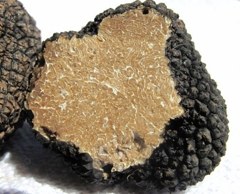 The history of truffles