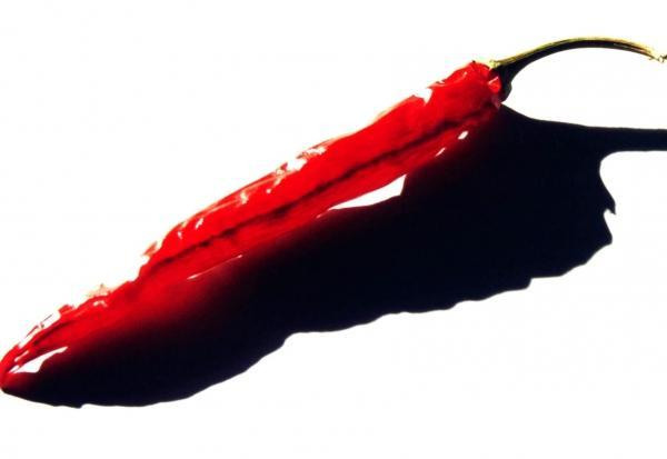 close up of a red chile pepper on a white background