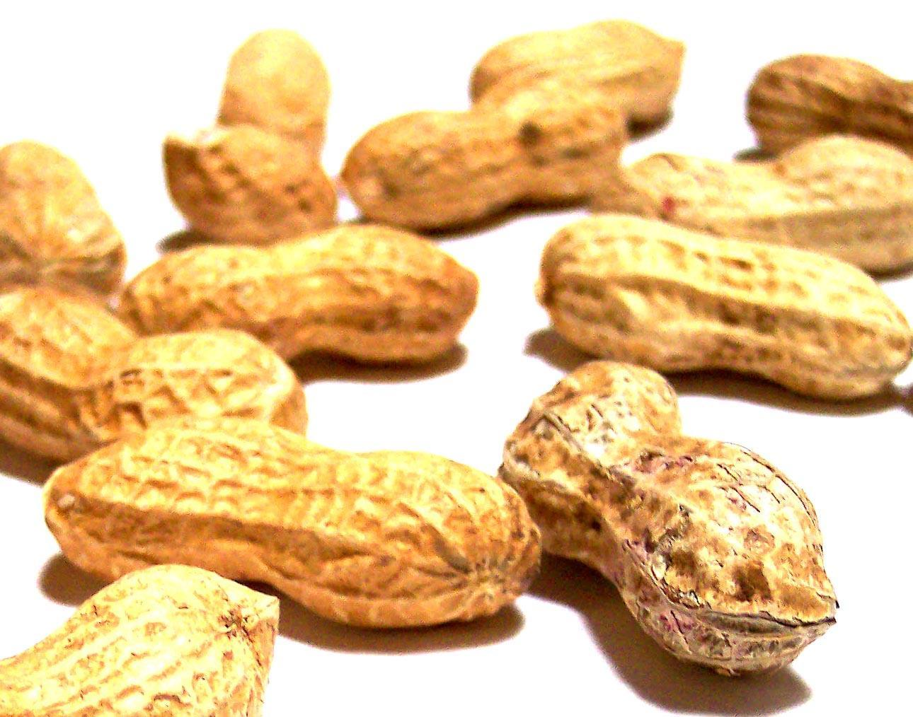 Closeup of peanuts