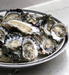 oysters--one of the 5 foods to serve your lover