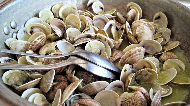 Clams are Good for Mood