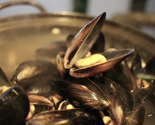 Spanish Style Mussels in Sailor Sauce