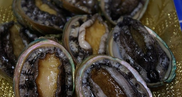 The Aphrodisiac History of Abalone