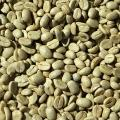 Closeup of green coffee beans