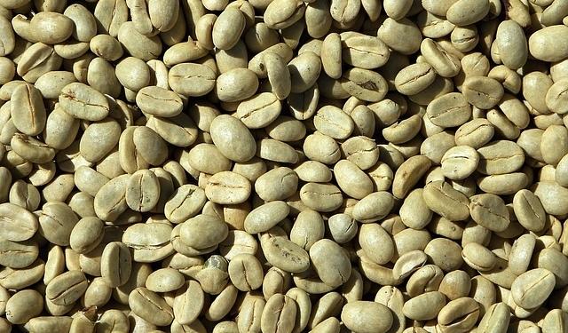 Closeup of green coffee beans