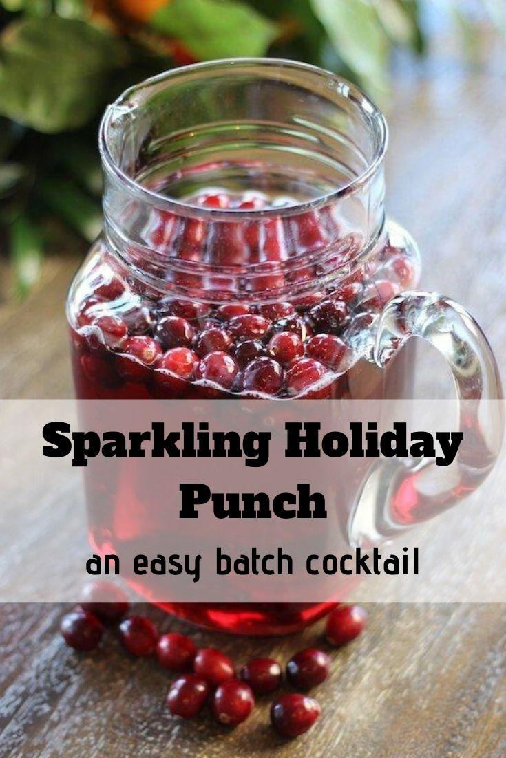 Holiday Punch Pinnable Graphic