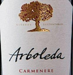 A Great Carmenere from Chile