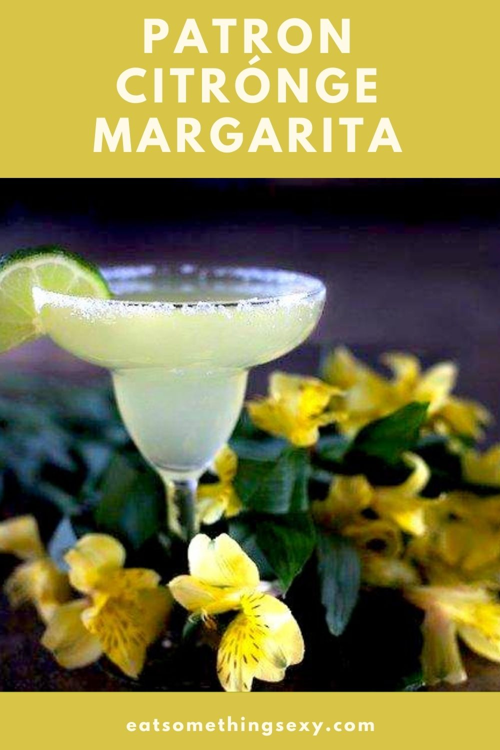 Patron Citronge Margarita Recipe Graphic