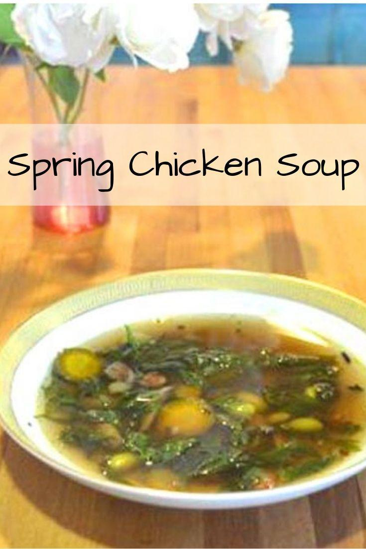 spring chicken soup pinnable graphic