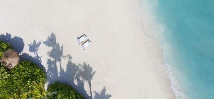 Two people laying on loungers on a white sand beach in the Maldives with palm trees in the bottom left corner of image