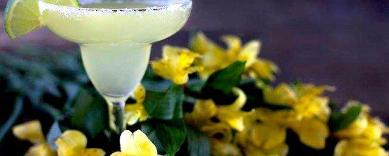 Closeup of a Patron Citronge Margarita surrounded by yellow flowers on a dark background