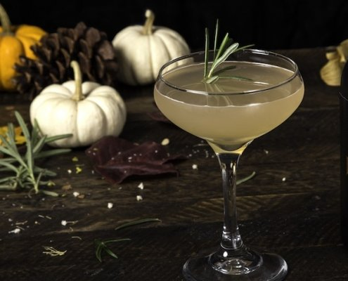 closeup of an East Indian Gimlet cocktail with a sprig of rosemary for garnish and a trio of pumpkins in the background