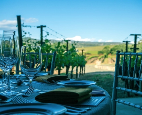 Vineyards in Yountville, Napa Valley