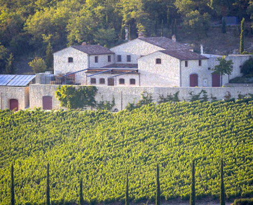 A view of Brancaia Winery from across it's vineyards