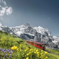 Image of a train running through the alps to inspire you to visit Switzerland
