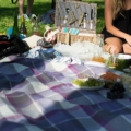 Romantic picnic in a park with wine