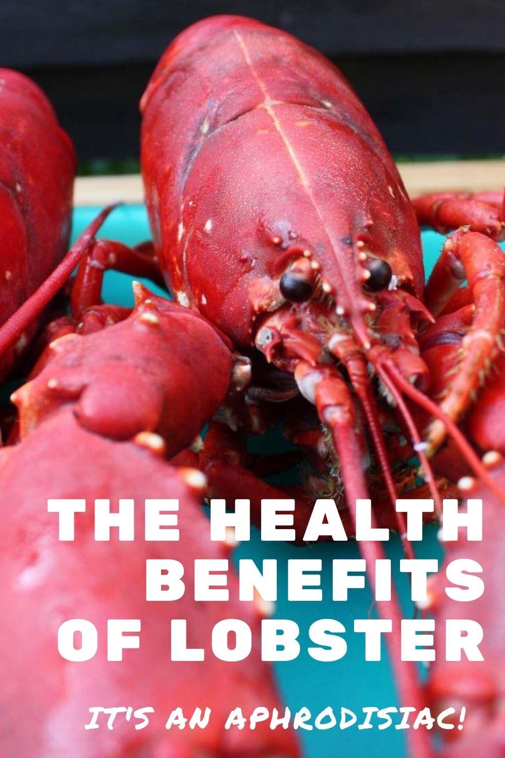 health benefits of lobster graphic