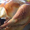 closeup of a whole, roast turkey