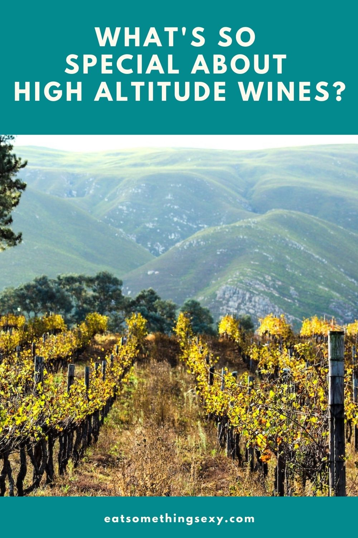 high altitude wines graphic