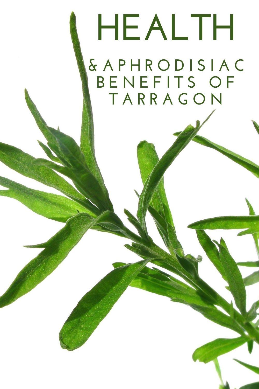 tarragon benefits graphic